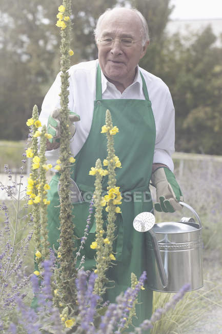 Senior man holding watering can in garden — Stock Photo