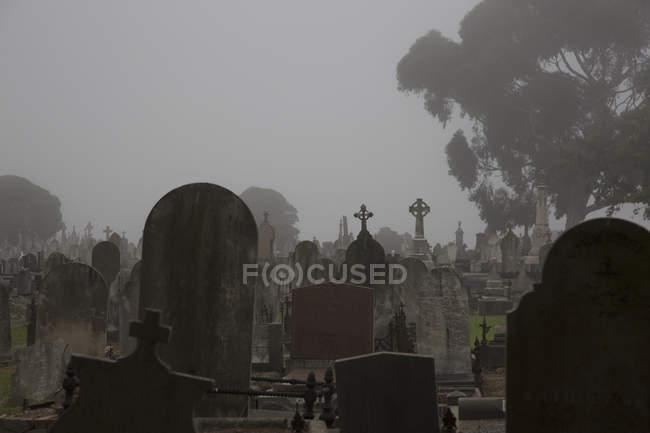 Tilt tumbstones at cemetery against misty sky, Melbourne, Victoria, Australia - foto de stock