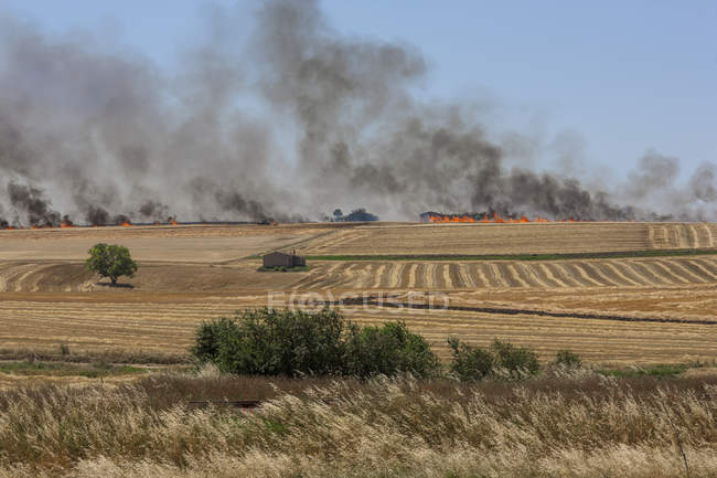 Vista de campos com fogo selvagem no horizonte — Fotografia de Stock