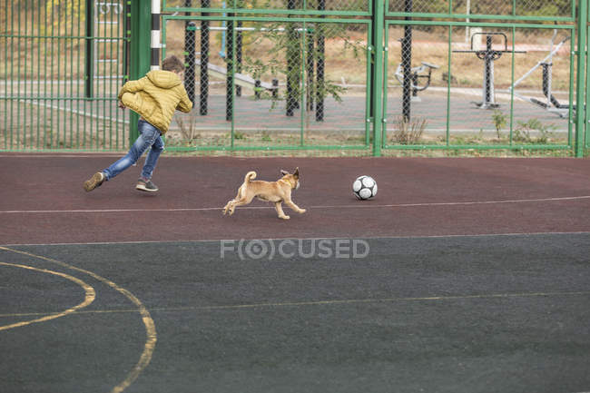 Boy and dog playing soccer at playground — Stock Photo