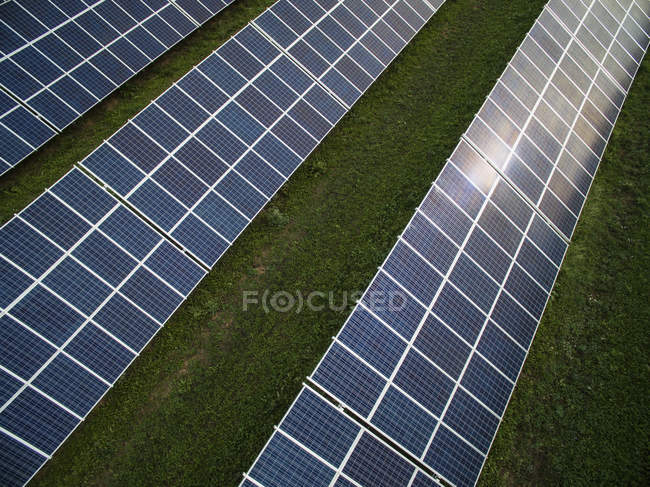 Low angle view of solar panels in row at green field — Stock Photo