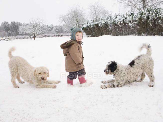 Bébé fille debout avec chiens d'eau portugais dans la neige — Photo de stock