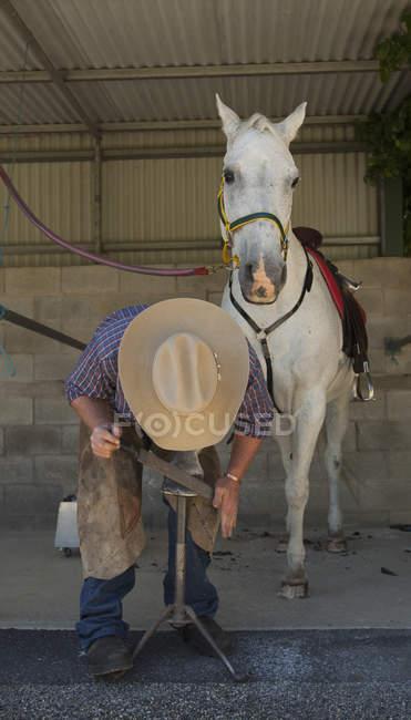 Vaquero con sombrero usando escofina en pezuña de caballo - foto de stock
