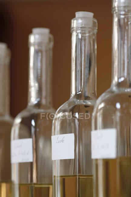 Урожай бутылки белого вина в строке — стоковое фото