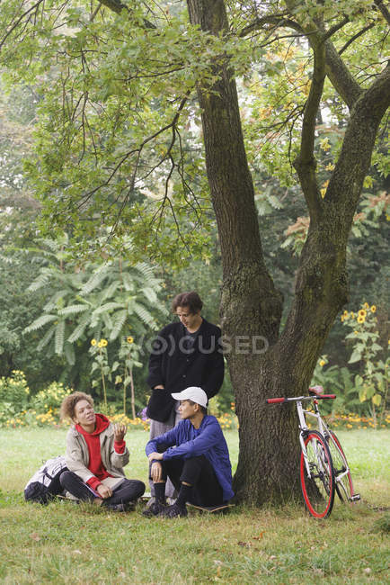 Friends talking while relaxing next to tree on grass in park — Stock Photo