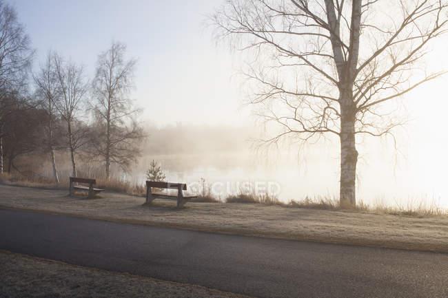 Estrada vazia e bancos por lago — Fotografia de Stock