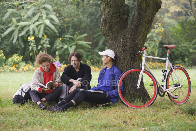 Friends relaxing next to tree on grass in park — Stock Photo