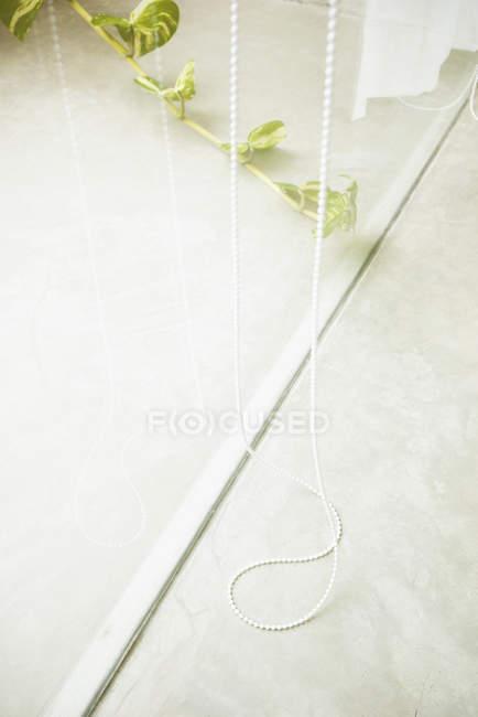 Vista de ángulo alto de persianas de cuerda colgando de la ventana de cristal - foto de stock
