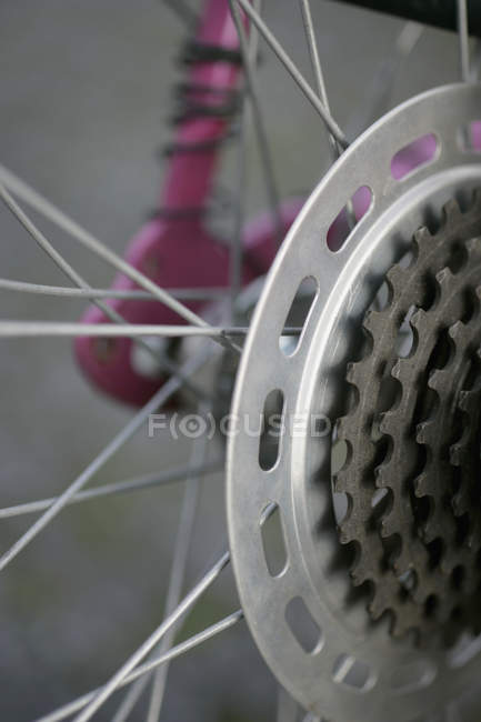 Close up of cogwheel gears of bicycle — Stock Photo