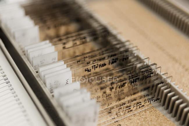 Cerrar vista de varios portaobjetos en un recipiente en el laboratorio - foto de stock