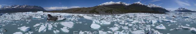 Panoramic view of icebergs in lagoon on sunny day — Stock Photo