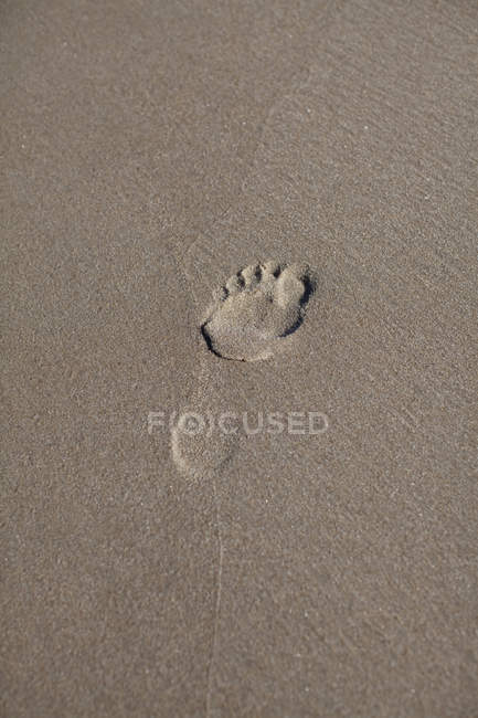 Full frame shot of wet sand with footprint — Stock Photo