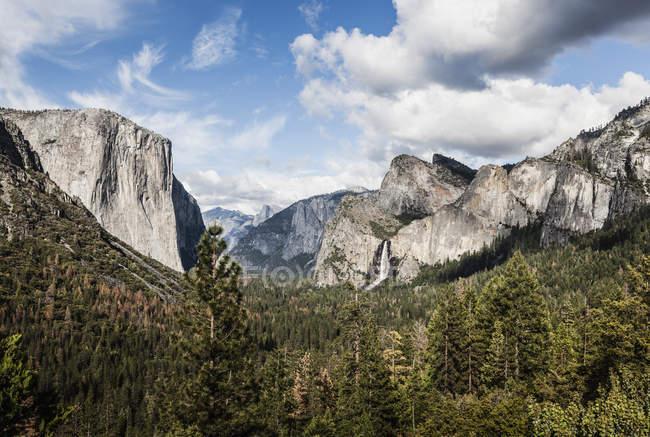Vista panorámica de árboles que crecen contra montañas rocosas en un día soleado - foto de stock
