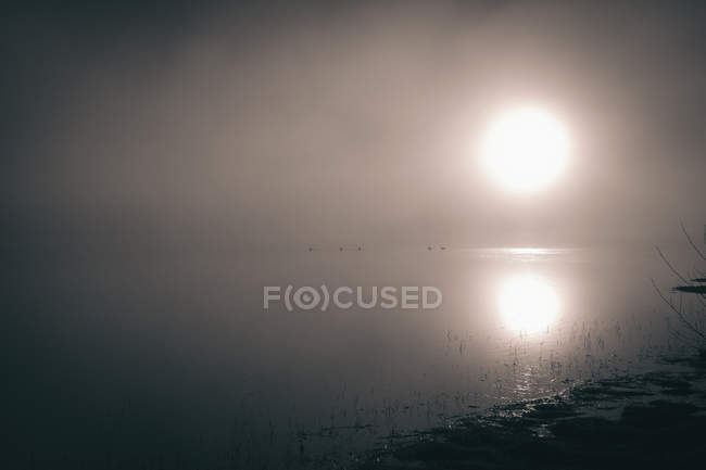 Scenic view of bright sun over calm lake in foggy weather — Stock Photo