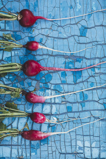 Top view of red radishes arranged on old blue wooden table — Stock Photo