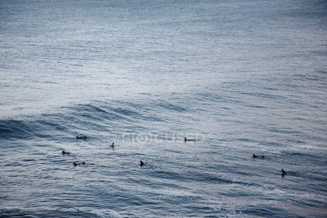 Distant view of surfers in rippled sea — Stock Photo