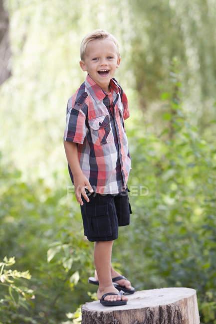 Boy on tree stump — Stock Photo