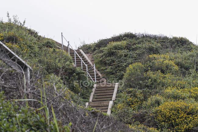 Кроки біг на пагорбі через чисте небо — стокове фото