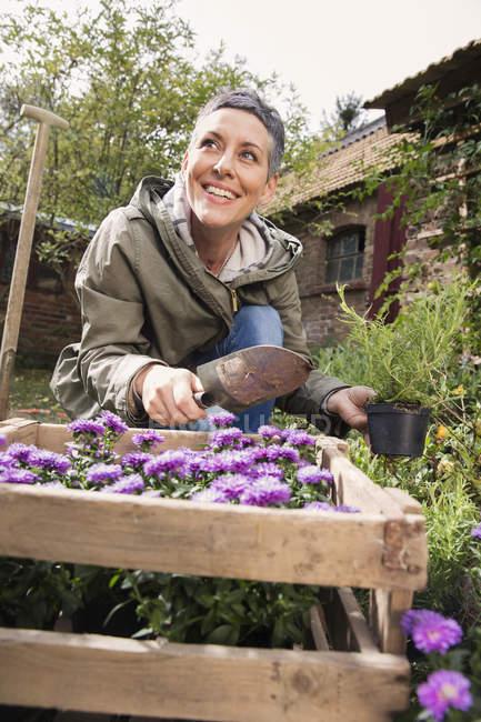 Mulher feliz plantando flores no quintal — Fotografia de Stock