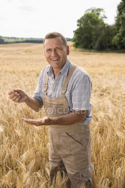 Portrait of happy farmer holding wheat while standing at field in farm — Stock Photo