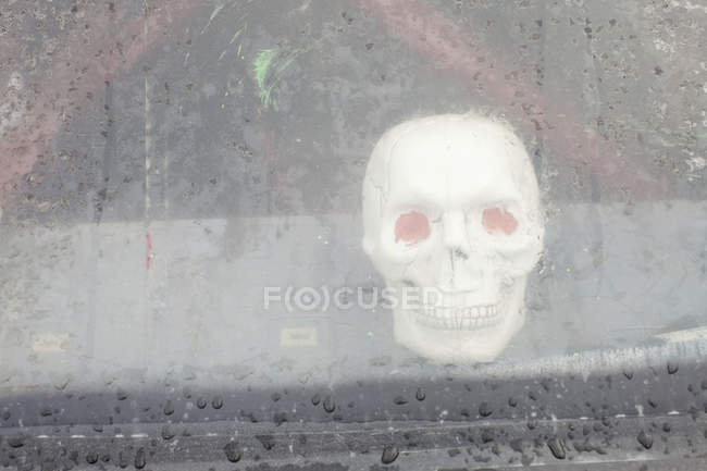 Plastic skull behind wet window with rain drips — Stock Photo