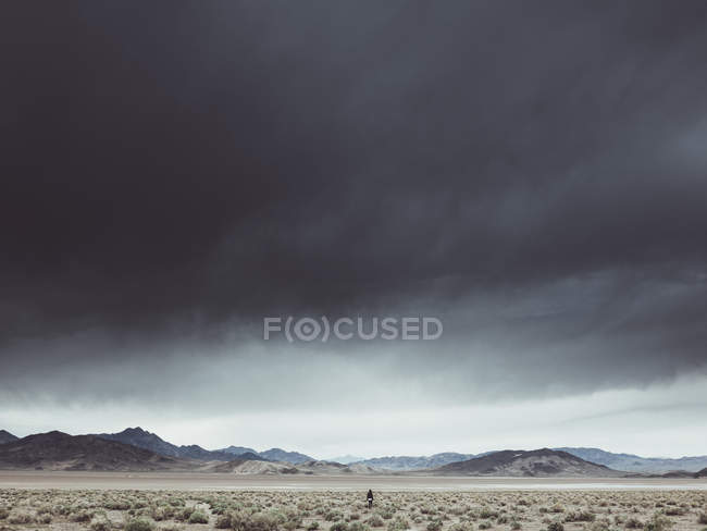 Rear view of person amid desert landscape under tough cloudy sky — Stock Photo
