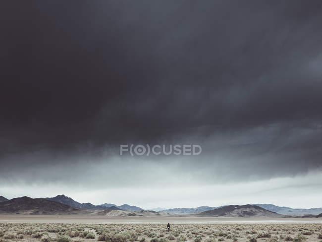 Rückansicht des Person inmitten Wüstenlandschaft unter harten bewölktem Himmel — Stockfoto