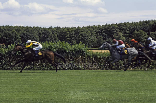 Side view of horse racing at green lawn against country ladnscape — Stock Photo