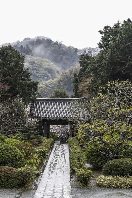 Vue du sentier menant au belvédère au milieu des arbres à la nature — Photo de stock
