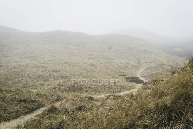 Paysage pittoresque de la campagne vallée par temps brumeux — Photo de stock