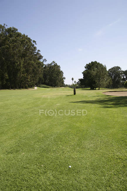 Golf ball on grassy sunlit course — Stock Photo