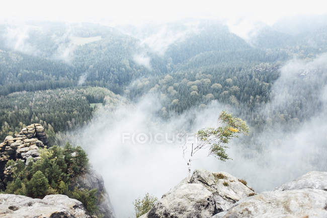Scenic view of foggy mountain valley — Stock Photo