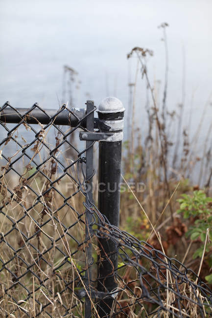 Vista de perto da cerca dobrada da corrente-ligação contra a grama seca — Fotografia de Stock