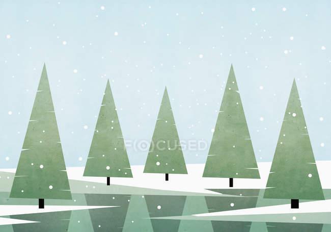 Иллюстрация сосновых деревьев, растущих на поле против неба в зимний период — стоковое фото