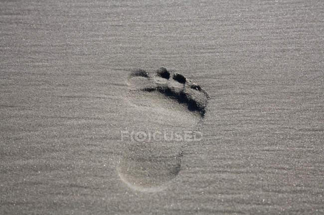 Fotograma completo de arena con una sola huella - foto de stock