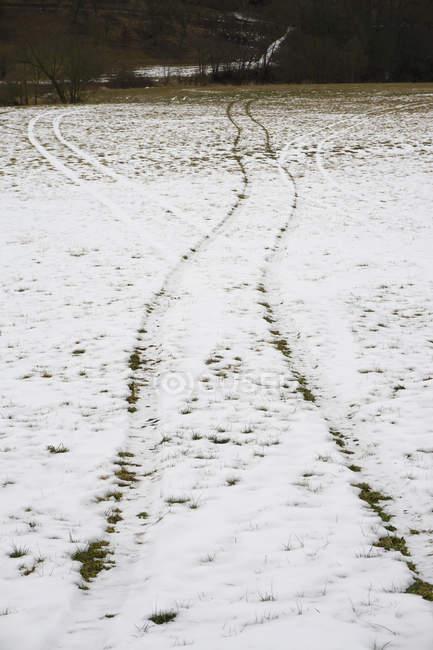 Pneus em campo coberto de neve — Fotografia de Stock
