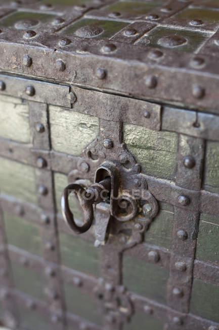 Крупним планом вид на замок і ключ на стовбурі — стокове фото