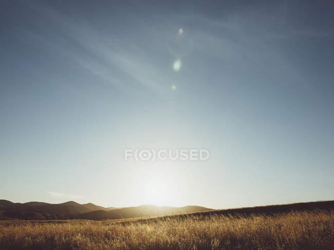 Vista panoramica del campo erboso e montagna contro il cielo nella giornata di sole — Foto stock