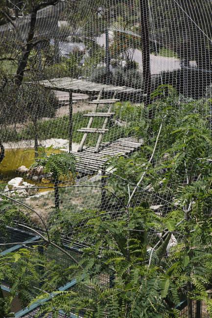 Вид через забор вольер животных в зоопарке — стоковое фото