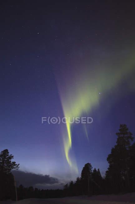 Низкий угол обзора сияния над силуэт деревьев на поле в ночное время, Кируна, Швеция — стоковое фото