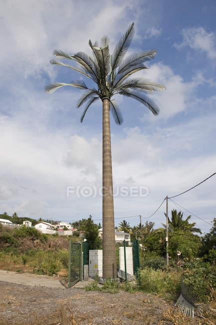 Torre ripetitrice cellulare travestita da palma contro il cielo nuvoloso — Foto stock