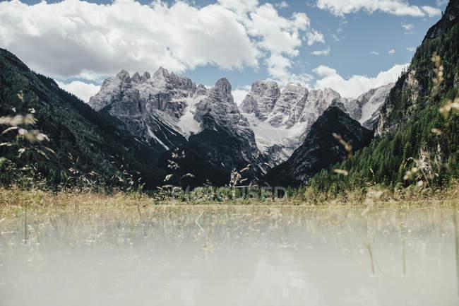 Malerische Aussicht auf Feld gegen Rocky Mountains am sonnigen Tag, Südtirol, Italien — Stockfoto