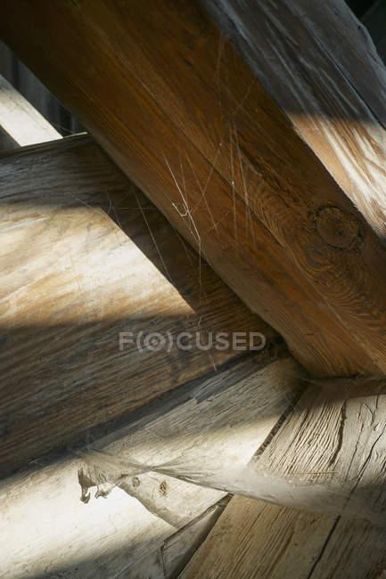 Gros plan de la toile d'araignée sur bois. — Photo de stock