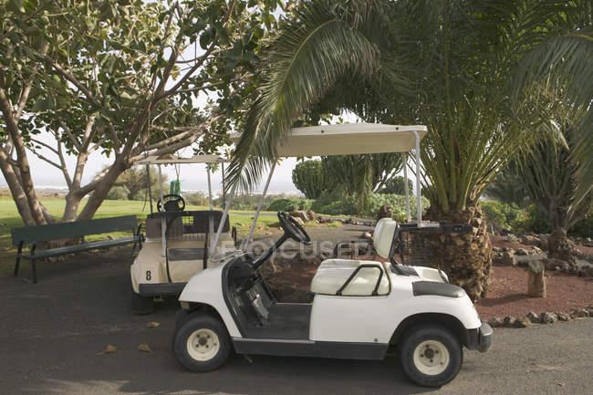 Dois carrinhos de golfe estacionado debaixo de árvores — Fotografia de Stock
