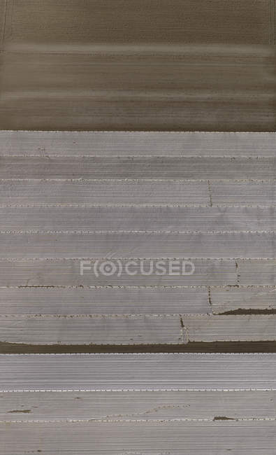 Vue aérienne du champ agricole recouvert de plastique — Photo de stock