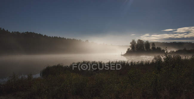 Scenic view of lake in forest against sky during foggy weather, Svobodniy, Amur, Russia — Stock Photo