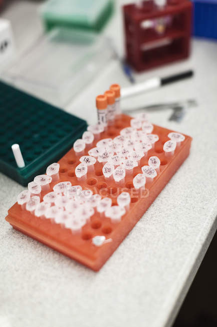 High angle view of various vials in rack on table at laboratory — Stock Photo