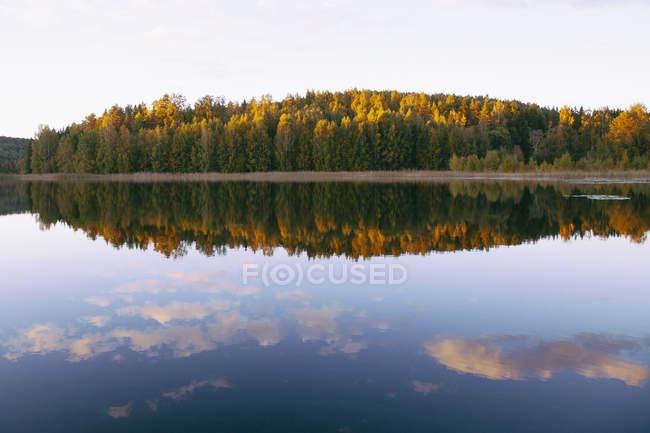 Vue panoramique sur automne arbres nu calme lac — Photo de stock