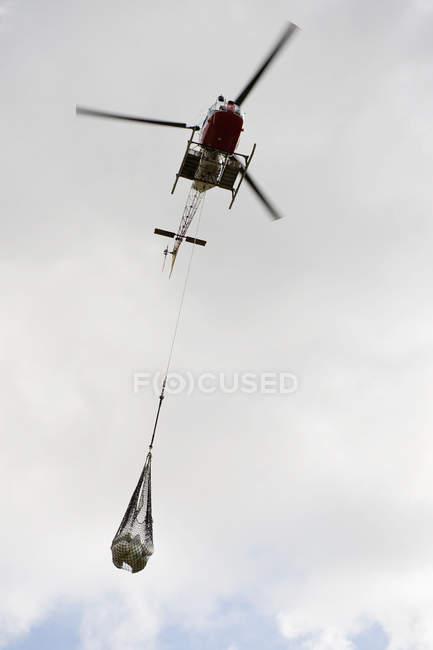 Vista inferiore di elicottero bundle in cielo — Foto stock