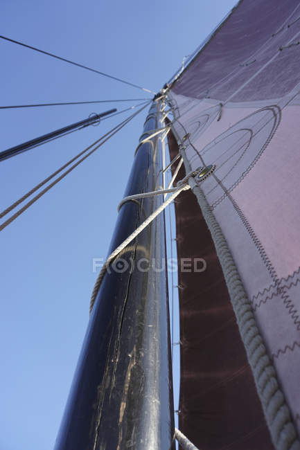 Bottom view of stain yacht mast and sails over blue sky — Stock Photo